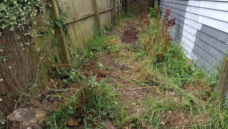 Garden Area Cleanup Auckland NZ